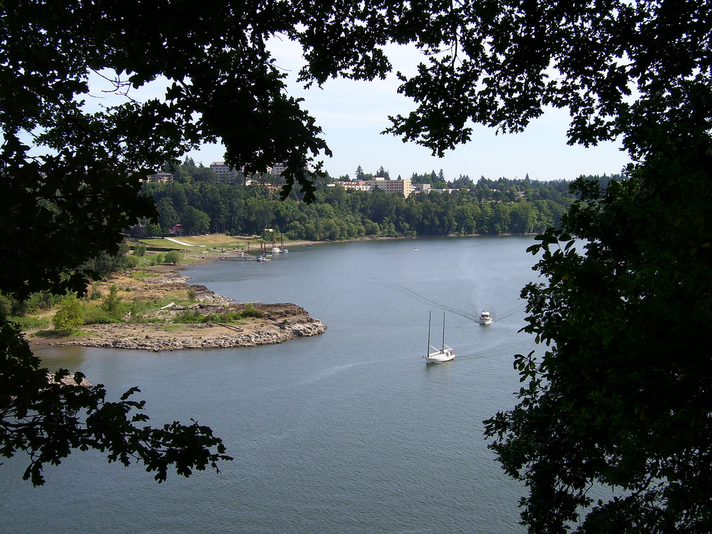 The Willamette River in Milwaukie, Oregon.