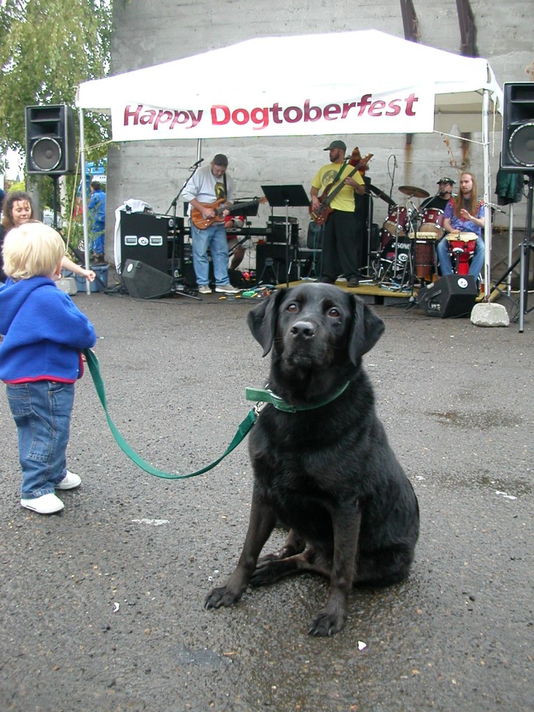 "Dogtoberfest happens each fall, and is a time to give back to the community. Proceeds go to the Dove Lewis Emergency Animal Hospital. ""Wash some dogs, and raise some money."" (Image Courtesy, Lucky Labrador Brewing Co.)"