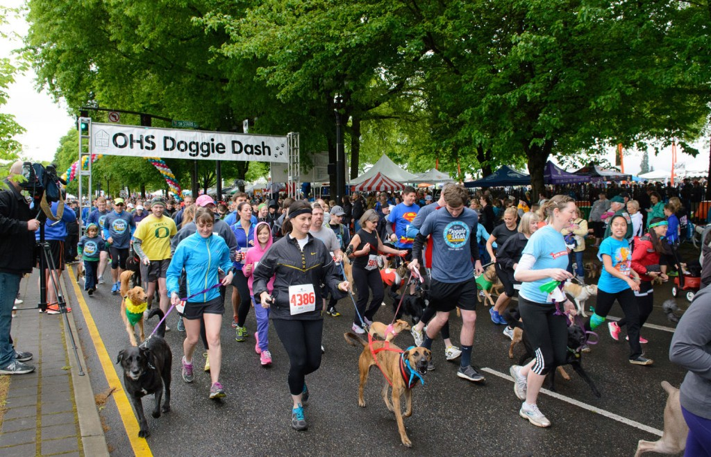 Doggie Dash fundraiser event in Portland Oregon. Image Courtesy, Oregon Humane Society