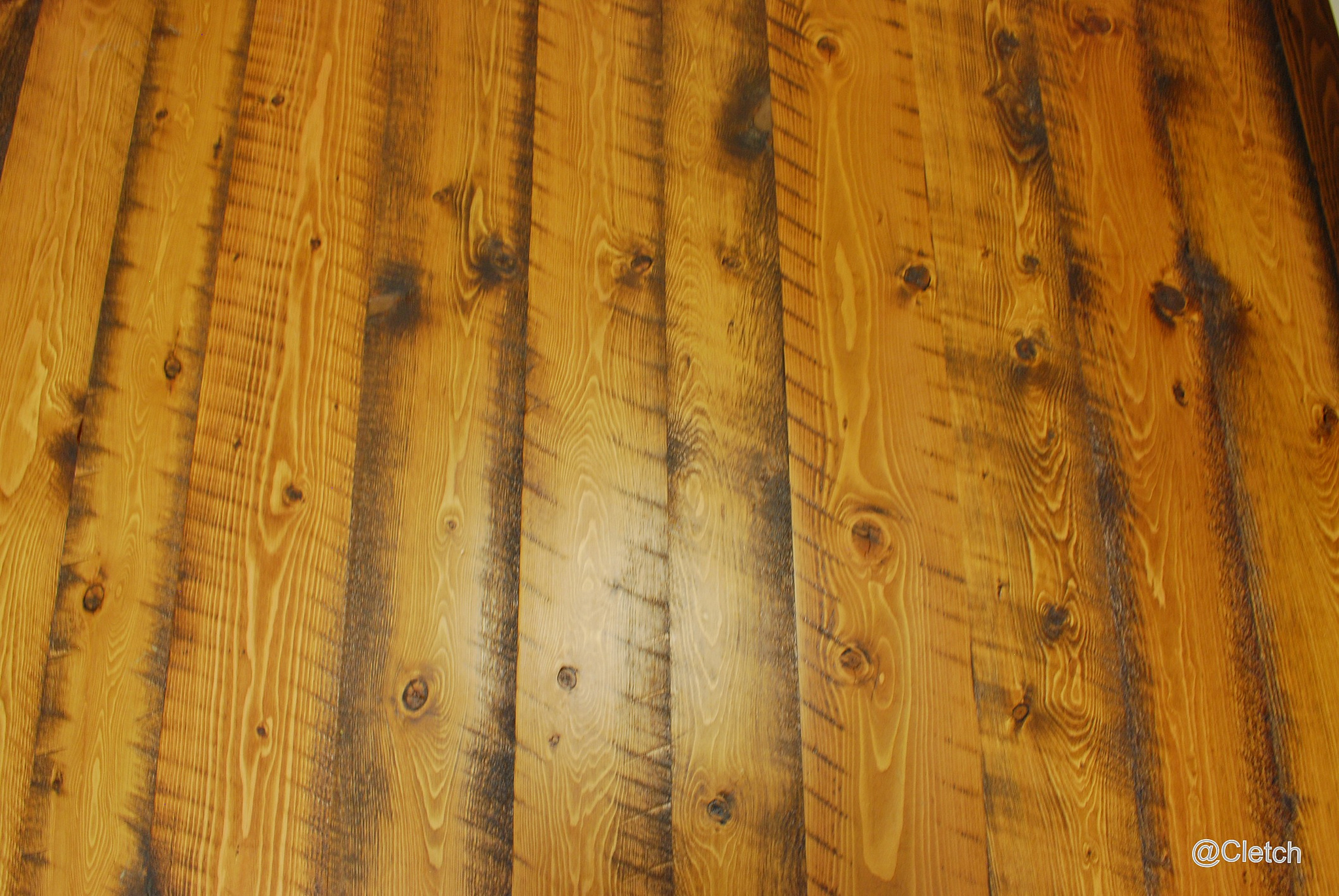 Douglas Fir is a very stiff soft wood, which makes it a great choice for a flooring.