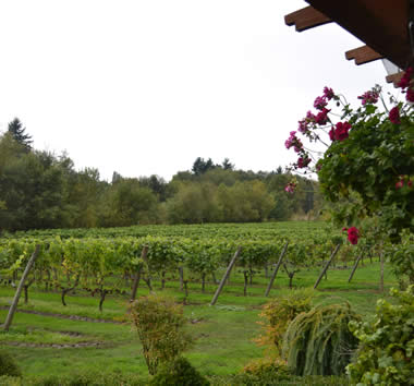 Southwest Washington is home to many small wineries. Image Courtesy of Visit Vancouver USA.